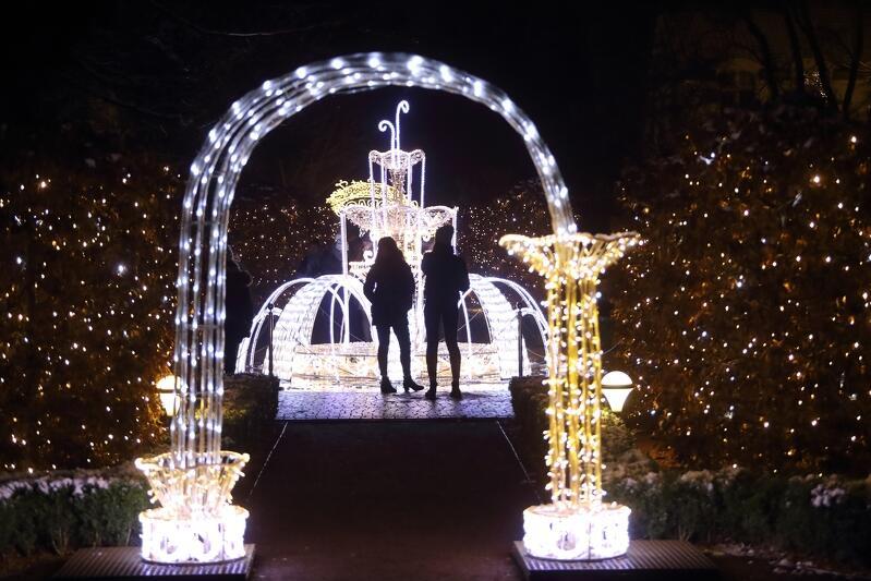 Świetlista brama w Parku Oliwskim