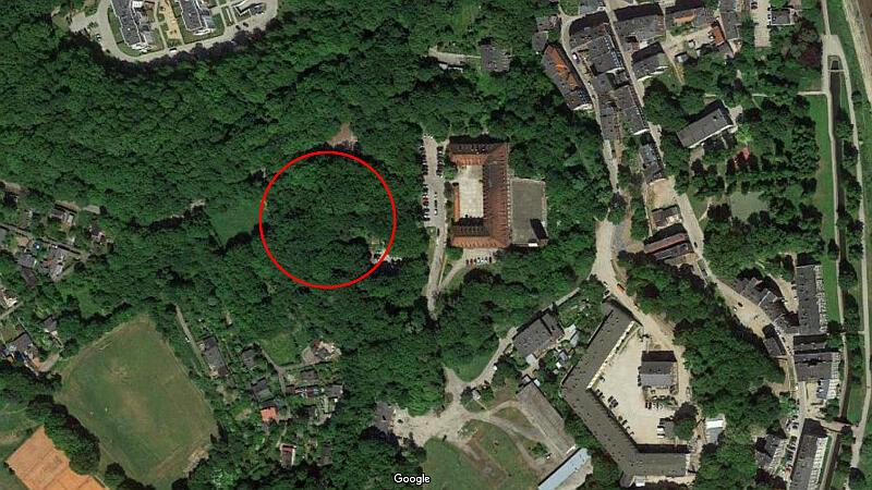 Lokalizacja grobu Nataniela Wolfa
