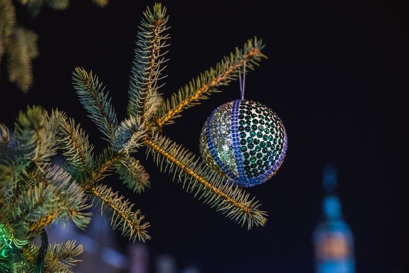 Bombki to najpopularniejsze ozdoby świąteczne, ale coraz więcej osób zastępuje je własnoręcznie wykonanymi ozdobami. Jak je zrobić? Dowiecie się na sobotnich warsztatach w Oliwskim Ratuszu Kultury
