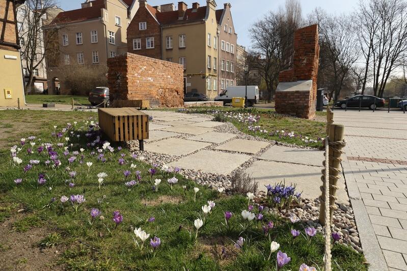 Ogród kieszonkowy w sąsiedztwie Gdańskiego Teatru Szekspirowskiego