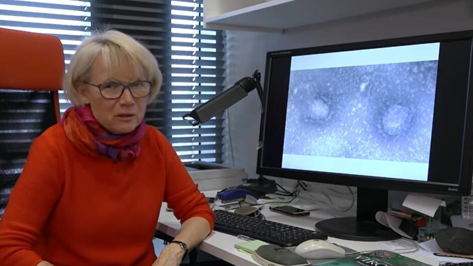 prof. dr hab. Krystyna Bieńkowska-Szewczyk, kierownikiem Zakładu Biologii Molekularnej Wirusów Międzyuczelnianego Wydziału Biotechnologii UG i GUMed