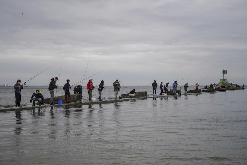 Im cieplejsza zima, tym szybciej wędkarze mogą zacząć łowić śledzie