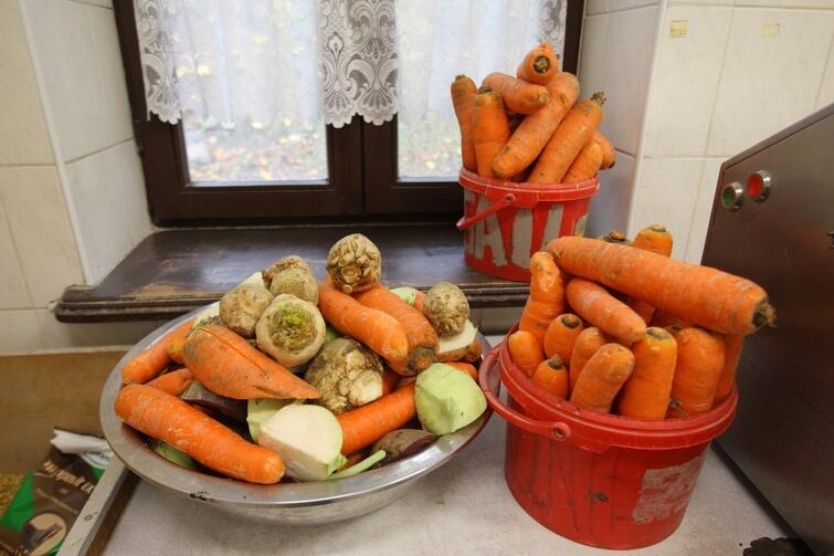 W czasie epidemii, jak i na co dzień, należy jeść dużo warzyw. Kupujcie je jednak w bezpieczny sposób