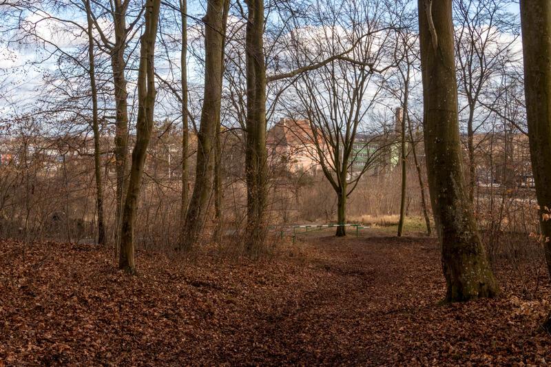 Park Ferberów w okolicach Traktu św. Wojciecha w Gdańsku Lipcach
