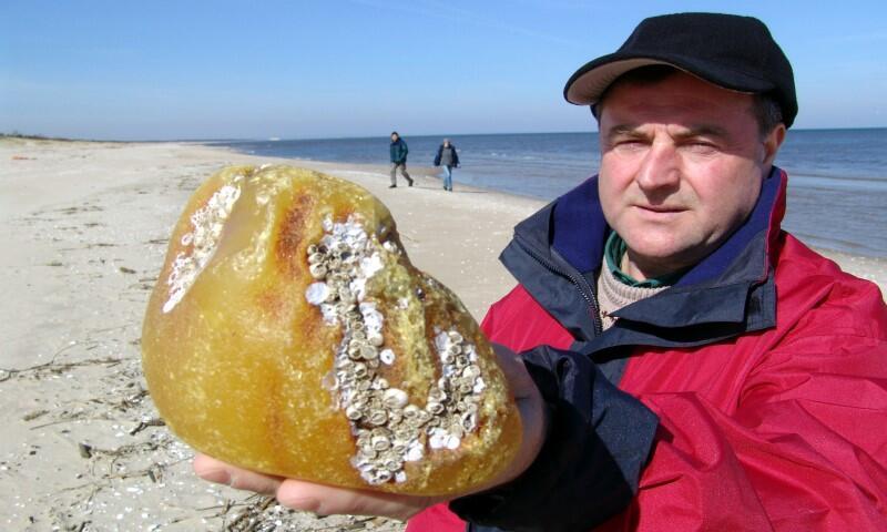 Sylwester Malucha swoją największą zdobycz - bryłę o wadze 940 g złowił w 2005 r. Cenny okaz ekologiczny znajduje się obecnie w gdańskim Muzeum Bursztynu