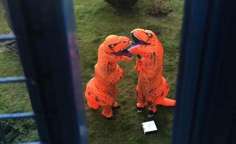 Nadzieja na powrót do normalności. Niemałą sensację wśród mieszkańców gdańskiej dzielnicy Aniołki wzbudziła pewnego wieczoru para spacerujących pomarańczowych dinozaurów. Okazało się, że celem ich wizyty było sprawienie odrobiny radości dzieciom w czasie pandemii