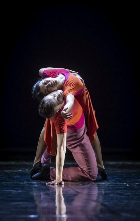 22 czerwca 2019, premiera spektaklu Wieczór latynoamerykański  w choreografii Mauricio Wainrota. Nz. tancerze Sayaka Haruna-Kondracka i Bartosz Kondracki