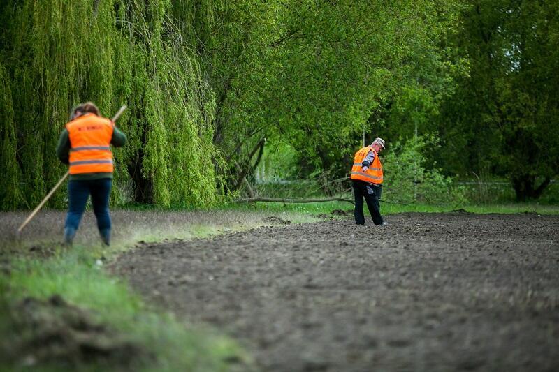 Przygotowanie łąki miejskiej do wysiewu, Gdańsk, maj 2020