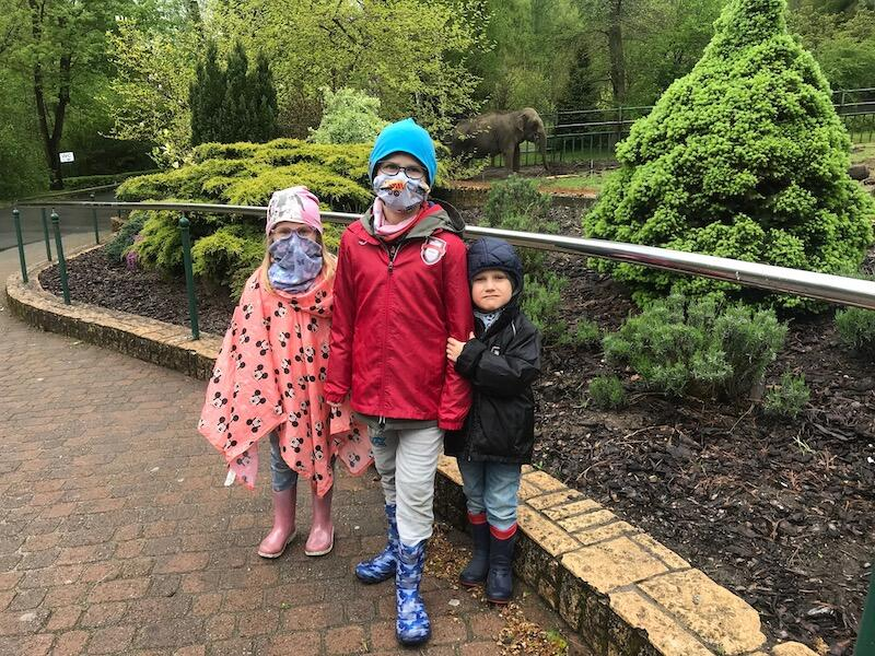Matylda, Nikolaos i Leonidas dotychczas odwiedzali zoo raz w miesiącu. Oczywiście nie byłoby to możliwe, gdy nie rodzice, którzy ukryli się poza kadrem