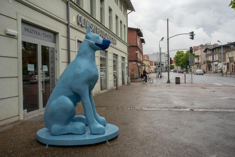 Ma ponad dwa metry, błękitny odcień i... wiedzę na temat aktualnych wystaw. To As, pies strzegący Oliwskiego Ratusza Kultury