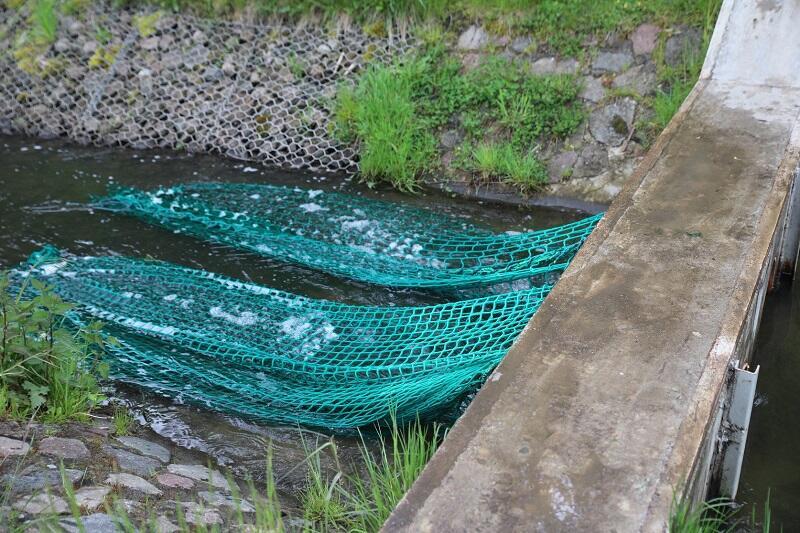 Siatki na śmieci przenoszone przez potok Strzyża to na razie rozwiązanie testowe