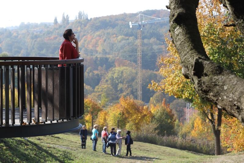 Taras widokowy przy Zbiorniku Stary Sobieski we Wrzeszczu