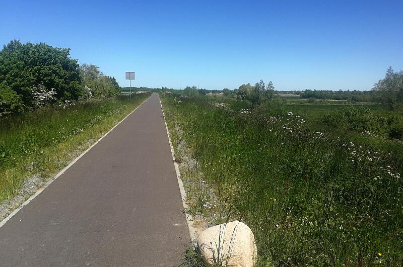 Wiślana Trasa Rowerowa wiedzie przez niezwykłe przyrodnicze tereny