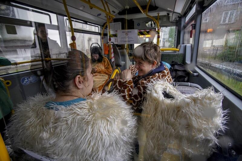 Lama i żyrafa w autobusie GAiT w drodze pod okna szpitala