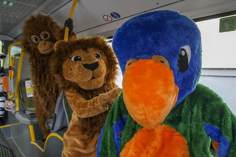 Zebra, żyrafa, orangutan, kangur, lama, papuga i lew uciekły z zoo, by spotkać się z dziećmi
