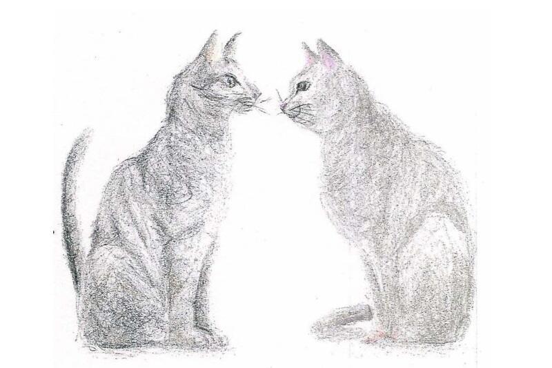 Kot Gutek to wymyślony przez bohaterów i opiekunów z Fundacji Czeka Na Nas Świat bohater, którego narysowała Agatę Kulikowicz. Ciekawski zwierzak zaprasza do zwiedzania Gdańska