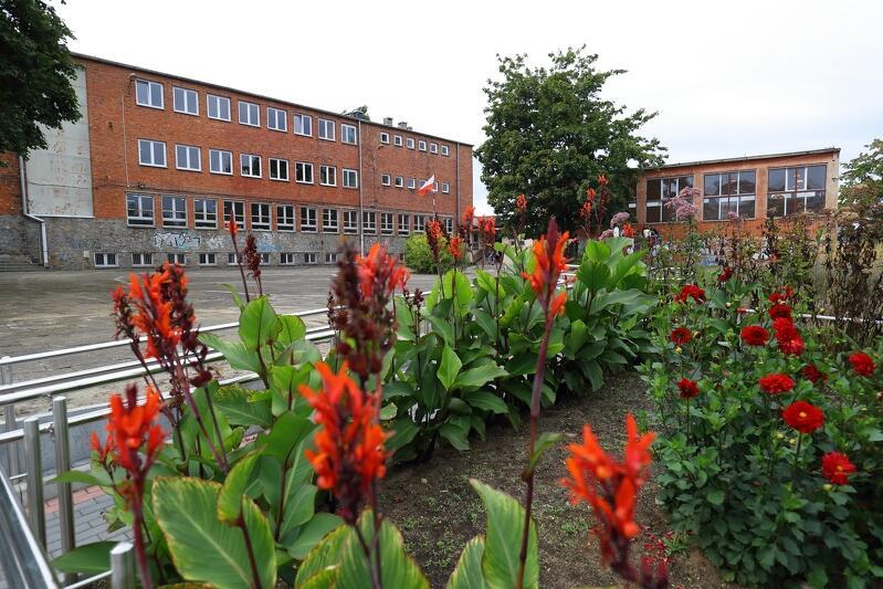 Wokół szkoły jest mnóstwo zieleni i ogródki z roślinami miododajnymi i lubianymi przez motyle