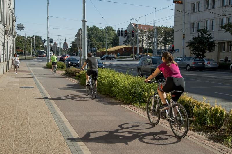 Rowerzyści jadący drogą rowerową wzdłuż Długich Ogrodów