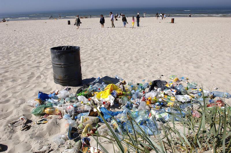 Sprzątnie w ramach akcji Bałtycka Odyseja potrwa między 9 - 11 października. W programie m.in. zbieranie śmieci na Stogach i Wyspie Sobieszewskiej