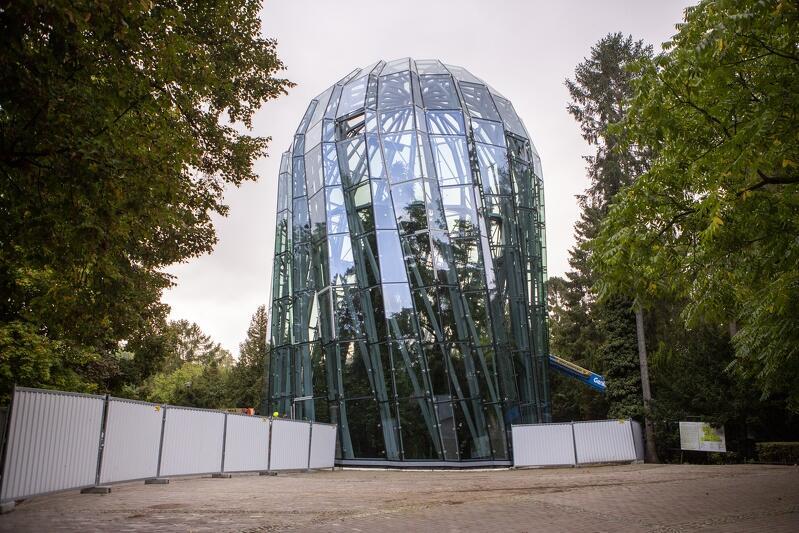 Jesienią 2020 roku rotunda ma zostać ukończona i częściowo udostępniona do oglądania z zewnątrz. Pełne udostępnienie szklanej rotundy będzie możliwe, gdy zakończony zostanie remont zabytkowej oranżerii (oba budynki są połączone), czyli prawdopodobnie pod koniec 2021 roku