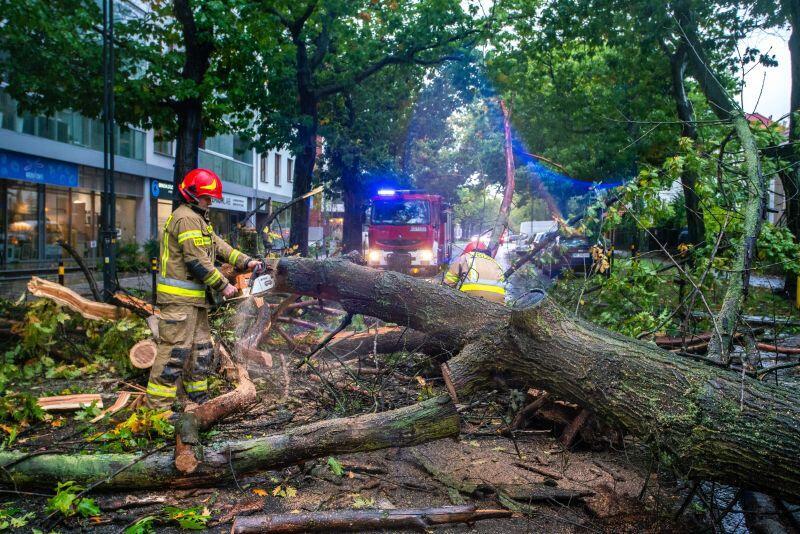 Interwencja strażaków przy ul. Szymanowskiego w Gdańsku
