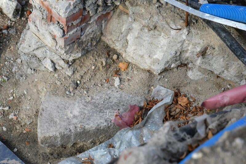 Fragment żarna to widoczny w środkowej części zdjęcia zaokrąglony kamień