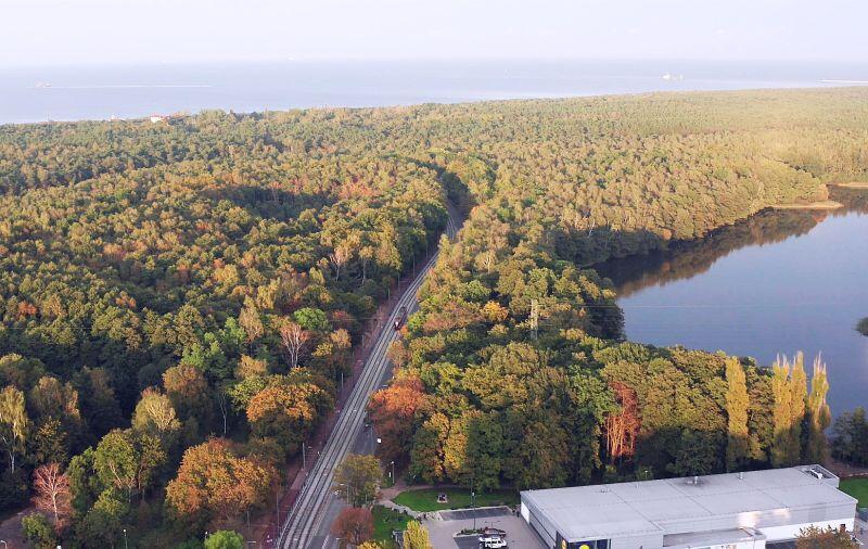 Najbardziej atrakcyjny  wyremontowany odcinek - las tuż przed Pętlą  Stogi Plaża