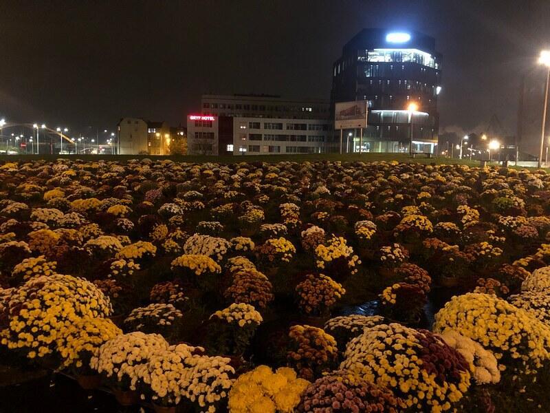 Serce na Placu Solidarności przez cały dzień wypełniły się setkami chryzantem. Poniedziałek, 2 listopada, godz. 20.30