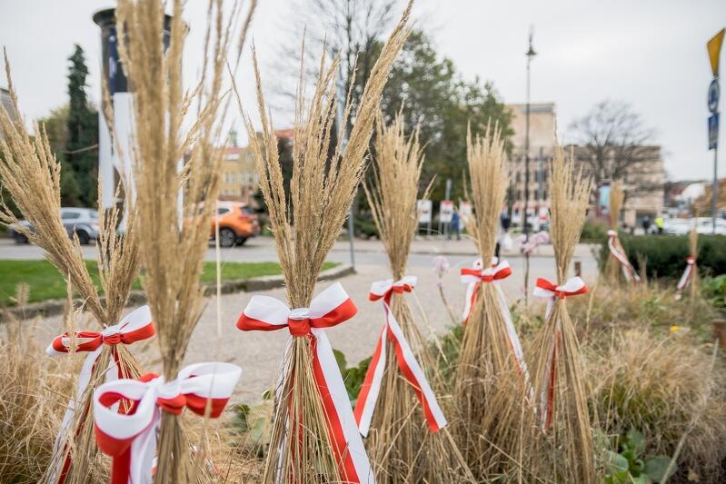 Trawy na Placu Dariusza Kobzdeja