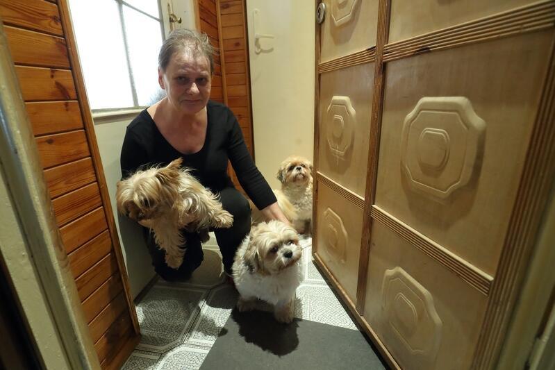 Nz. Pani Krystyna nie może liczyć na wsparcie dzieci, ale każdego dnia towarzyszą jej trzy psiaki