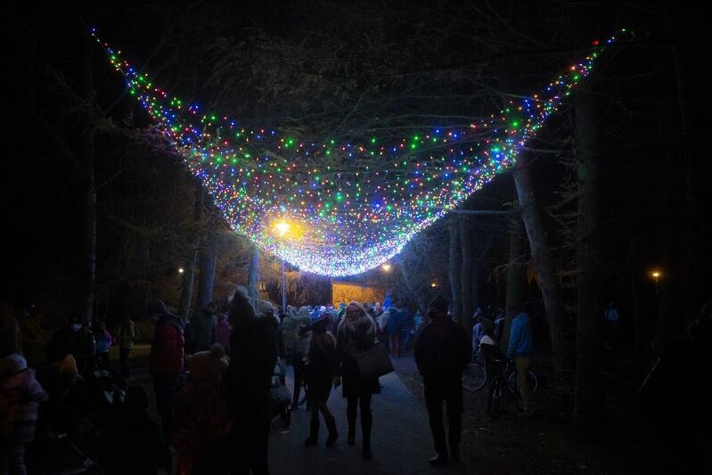 Odpalenie choinki i św. Mikołaj w Parku Chirona