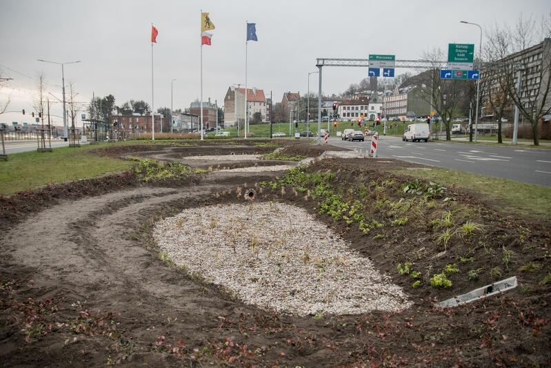 Przy węźle Groddecka, u zbiegu ulic: 3 Maja i Armii Krajowej, powstał kaskadowy ogród deszczowy