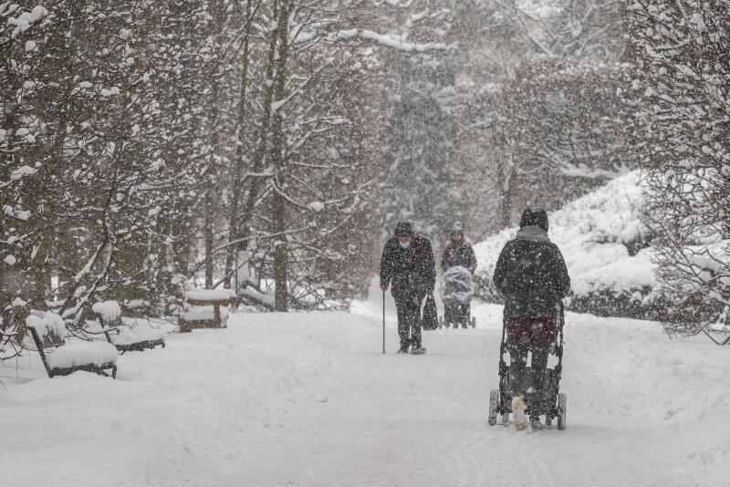 W styczniu i lutym obserwować możemy w Gdańsku rzadkość w ostatnich latach - intensywne opady śniegu, temperaturę wynoszącą nawet do -16 stopni i porywisty wiatr, który powoduje zamiecie. Czy takie będą zimy przyszłości?