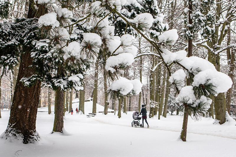 W strefie klimatycznej Polski akumulacja pokrywy śnieżnej zimą ma kluczowe znaczenie dla zachowania poprawnego bilansu wodnego. Gdy przychodzi wiosna i czas roztopów, topnienie śniegu skutkuje dostaniem się do gleby większości zakumulowanej przez zimę wody