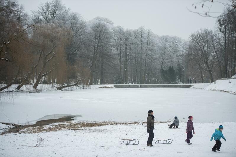 Park zimą, śnieg, zamarznięty zbiornik retencyjny