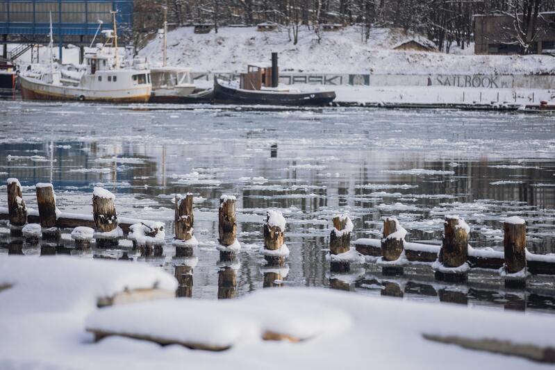 `Gdańskie wody` w Nowym Porcie. Zdjęcie ilustracyjne