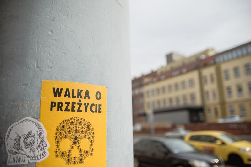 Żółta prostokątna nalepka na słupie ulicznym, na niej napis znak trupiej czaszki i napis - Walka o przeżycie. W tle znajduje się ulica i gmach szpitala