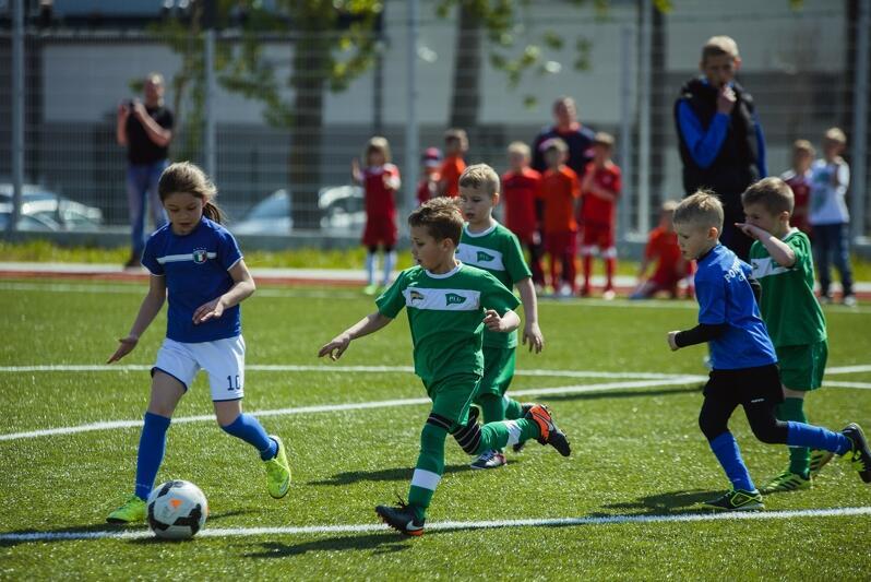 O przydziale środków decydowały w największym stopniu wyniki osiągane przez kluby w Systemie Sportu Młodzieżowego (młodzik, junior młodszy, junior, młodzieżowiec)