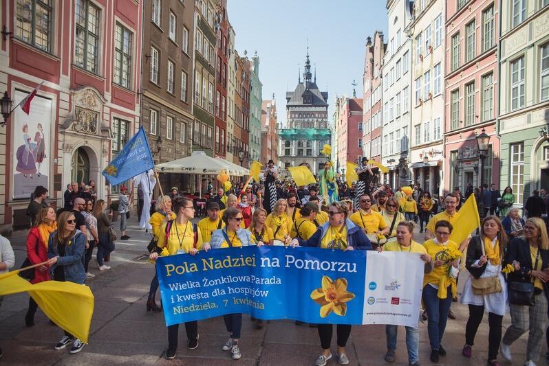 Pola Nadziei widoczne były w przestrzeni Gdańska od kilkunastu lat, w tym roku wydarzenie musiało przenieść się do sieci