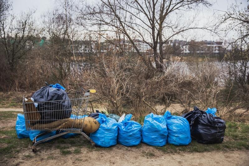 Drzewa, trawa, palstikowe worki ze śmieciami