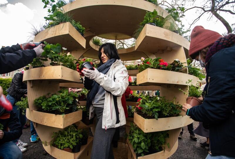 Growroom to miejska farma. Projektantom przyświecała myśl o samowystarczalności miast. Czy można w mieście hodować warzywa, zbierać plony?