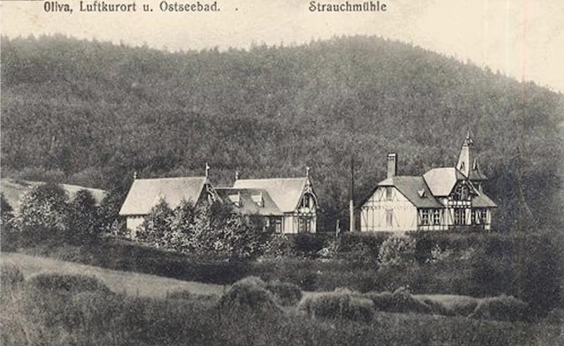 Na terenach, gdzie dzisiaj znajduje się Gdański Ogród Zoologiczny na początku XIX wieku znajdowało się uzdrowisko