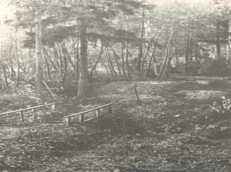 Mostek, który widać na zdjęciu w drugiej połowie XX wieku był wejściem do oliwskiego zoo. Dzisiaj w tym miejscu znajduje się brama główna