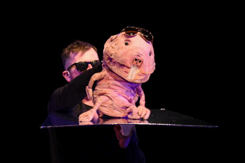 W spektaklu pojawiają się zarówno aktorzy, jak i lalki o... bardzo nietypowej urodzie