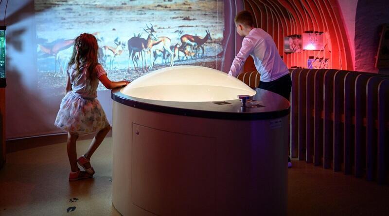 """Warsztaty, specjalne pokazy, wystawy stałe... Moc atrakcji czeka podczas Tygodnia Dziecka w Hevelianum. Nz. wystawa """"Dookoła Świata"""" (zdjęcie archiwalne)"""