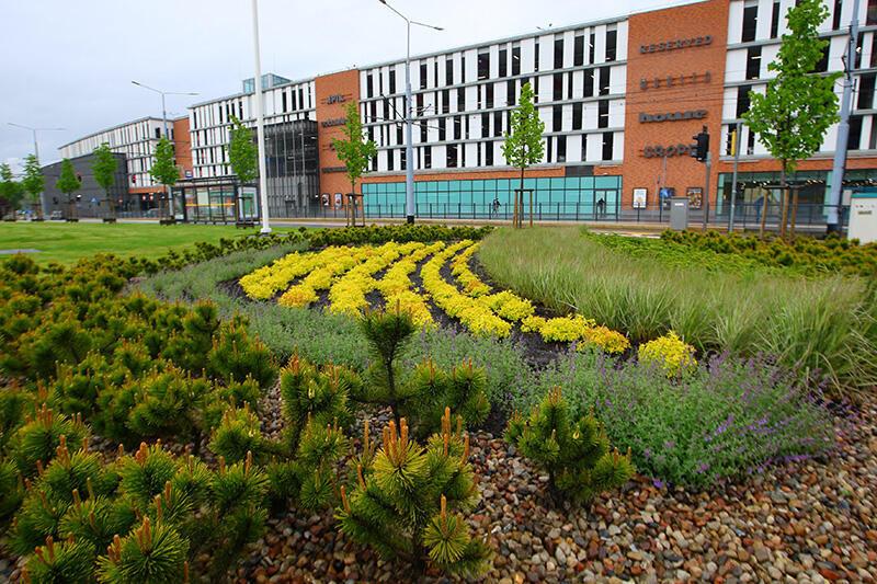 System ogrodów deszczowych w Śródmieściu przy Węźle Groddecka