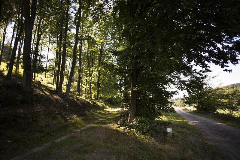 Trójmiejski Park Krajobrazowy, część oliwska