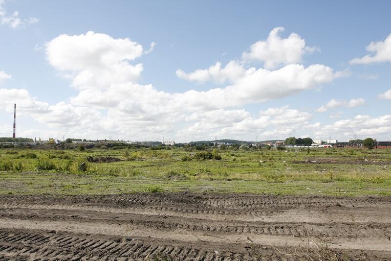 Prace porządkowe na terenie dawnych ogródków działkowych rozpoczęły się w kwietniu 2008 roku