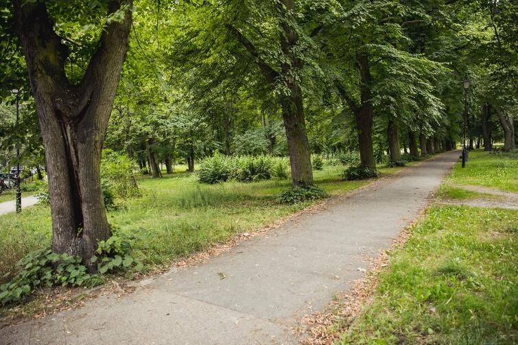 Czy Park Gen. Józefa Bema  zmieni nazwę na  Park Siedlce ? Tego chcą radni dzielnicy