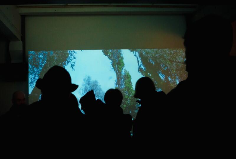 """Wystawa """"Drzewa Pamięci"""" jest poświęcona tragedii w Babim Jarze – masowym rozstrzelaniom Żydów przeprowadzonym w Kijowie na Ukrainie przez nazistowskie Niemcy podczas II wojny światowej"""